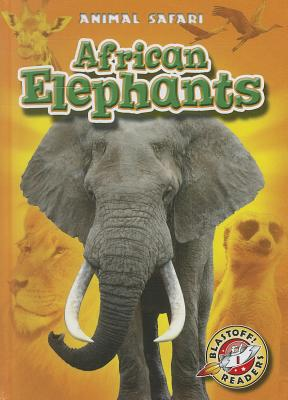 African Elephants By Schuetz, Kari